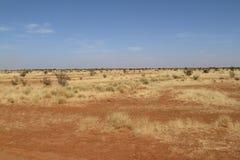 Sahara w Sudan w Afryka Zdjęcie Stock