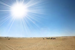 Sahara-Wüste mit Sonne Stockfotografie