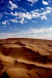 Saharawüste und -düne Lizenzfreie Stockfotografie