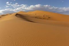 Sahary i piasek diun krajobraz przy wschód słońca obraz royalty free
