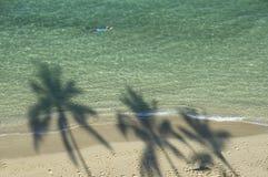 Sahdow del nadador y de las palmeras en la playa. Foto de archivo