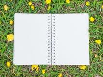 Sahnefarbnotizbuch auf grünem Gras Stockfotografie