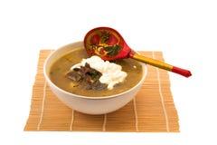 Sahnesuppe mit Pilzen Lizenzfreie Stockfotografie