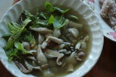 Sahnesuppe mit Pilzen Stockbild