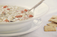 Sahnige Hühnerwildreis-Suppe Stockbild
