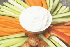 Sahnige Soße in der weißen Schüssel und in den verschiedenen Gemüsetomaten, Wechselstrom Lizenzfreie Stockbilder