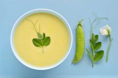Sahnige Suppe der grünen Erbse - Erbsenhülse, Blume, Ranke. Stockfotografie