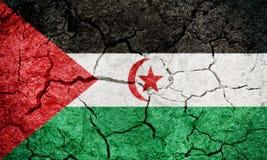 Sahrawi Arab Democratic Republic flag stock photography