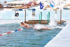 SAHYURTA, ΠΕΡΙΟΧΗ του ΙΡΚΟΥΤΣΚ, της ΡΩΣΙΑΣ - 11 Μαρτίου 2017: Φλυτζάνι Baikal Χειμερινή κολύμβηση Πεταλούδα Στοκ φωτογραφία με δικαίωμα ελεύθερης χρήσης