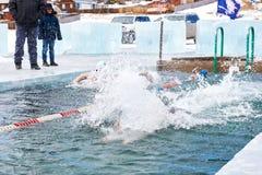 SAHYURTA, het GEBIED van IRKOETSK, RUSLAND - Maart 11 2017: Kop van Baikal De winter het zwemmen Vlinder Stock Afbeeldingen