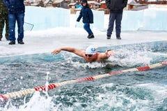 SAHYURTA, het GEBIED van IRKOETSK, RUSLAND - Maart 11 2017: Kop van Baikal De winter het zwemmen Vlinder Stock Fotografie
