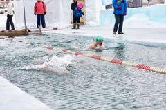 SAHYURTA IRKUTSK REGION, RYSSLAND - mars 11 2017: Kopp av Baikal Vintersimningkonkurrenser _ Arkivfoto