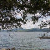Sai Kung Bay sotto gli alberi fotografia stock