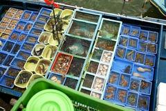 Seafood boat Sai Kung Pier, Sai Kung District Hong Kong royalty free stock image