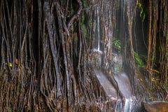 Sai Rak Yoi waterfall Stock Image