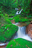 Sai Thip waterfall Stock Photo