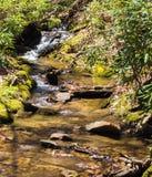 "Saiblings-Strom †""blauer Ridge Parkway, North Carolina, USA Lizenzfreie Stockfotografie"