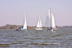 Saiboats op Haringvliet in Nederland Royalty-vrije Stock Fotografie