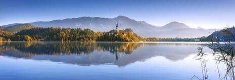 Saigné en Slovénie, l'Europe Photo stock