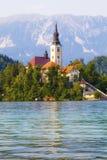 Saigné, la Slovénie Île au milieu du lac avec l'église images libres de droits