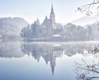 Saigné, la Slovénie, l'Europe Images libres de droits