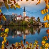 Saigné, la Slovénie - le beau lever de soleil d'automne au lac a saigné avec l'église célèbre de pèlerinage de l'acceptation de M images libres de droits