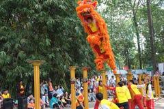 Saigon, Vietnam - 3 de febrero de 2014: Baile del león en los pilares Mai Hoa Thung de la flor en Tao Dan Park en el Año Nuevo lu Foto de archivo libre de regalías