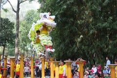 Saigon, Vietnam - 3 de febrero de 2014: Baile del león en los pilares Mai Hoa Thung de la flor en Tao Dan Park en el Año Nuevo lu Imagen de archivo libre de regalías