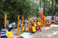 Saigon, Vietnam - 3 de febrero de 2014: Baile del león en los pilares Mai Hoa Thung de la flor en Tao Dan Park en el Año Nuevo lu Imagen de archivo