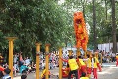 Saigon, Vietnam - 3 février 2014 : Danse de lion sur des piliers Mai Hoa Thung de fleur chez Tao Dan Park à la nouvelle année lun Photographie stock