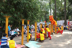 Saigon Vietnam - 03 Februari 2014: Lejondans på blommapelare Mai Hoa Thung på Tao Dan Park på det mån- nya året Fotografering för Bildbyråer
