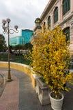 Saigonpostkantoor bij Maannieuwjaar, Vietnam Royalty-vrije Stock Afbeelding