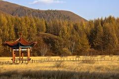 Saihanba National Forest Park Stock Images