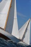 Saiiling lopp arkivbild