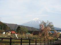 Saiko Iyashi-no-Sato Nenba- Mt Fuji Royalty Free Stock Photography