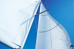 Sail_2 Stock Photography