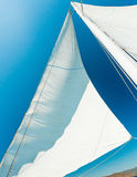 Sail Royalty Free Stock Photography