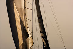 Sail Royalty Free Stock Images