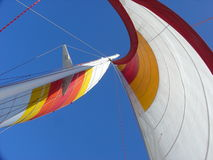 Sail. Of a catamaran on the Pacific Royalty Free Stock Images