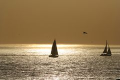 Sail boat. In a sunset sky Royalty Free Stock Image