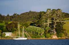 Sail boat at the Bay of Islands New Zealand Stock Image