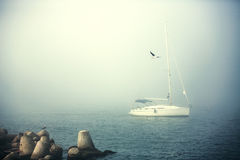 Sail boat in the foggy sea in a calm early morning royalty free stock images