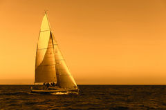 Sail boat on the ocean Royalty Free Stock Photo