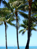 Sail Boat off Waikiki Beach. Honolulu, Hawaii, USA Stock Image