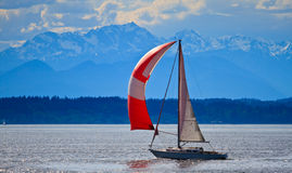 Sail boat on Puget Sound, Pacific Northwest Stock Photo