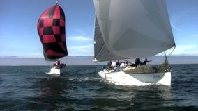 Sail Boat Racing POV 7 - San Diego California stock footage