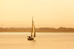 Sail boat sailing at sea Royalty Free Stock Photo