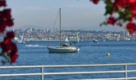 Sail boat in San Diego Stock Photography