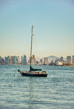 Sail Boat - San Diego. Single sail boat moored in San Diego Harbor. City skyline as backdrop royalty free stock images