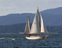 Sail boat in Stanley Park, Vancover, Canada Royalty Free Stock Photos